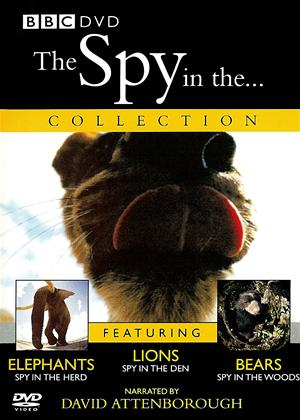 Rent The Spy in The Online DVD Rental