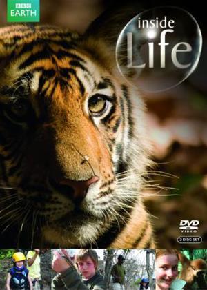Rent Inside Life Online DVD Rental