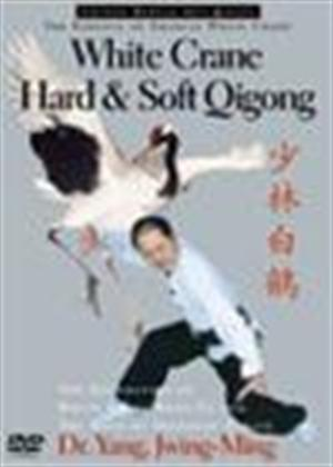 Rent Shaolin White Crane Hard and Soft Qigong Online DVD Rental