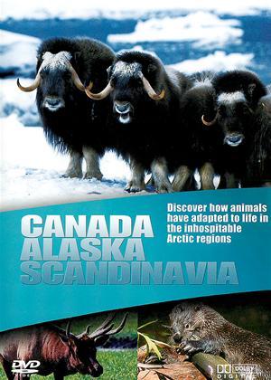 Rent Wildlife: Canada, Alaska, Scandinavia Online DVD Rental