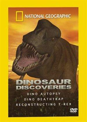 Rent National Geographic: Dinosaur Discoveries Online DVD Rental
