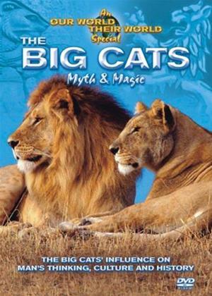 Rent Animal Nation: Big Cats: Myth and Legend Online DVD Rental
