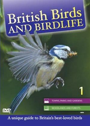 Rent British Birds: Vol.1 Online DVD Rental