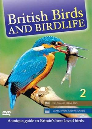 Rent British Birds: Vol.2 Online DVD Rental