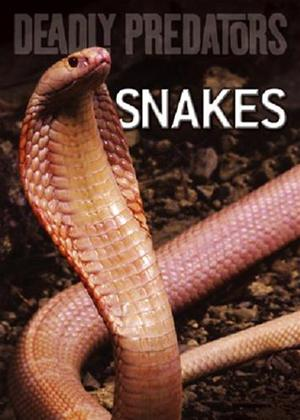 Rent Deadly Predators: Snakes Online DVD Rental
