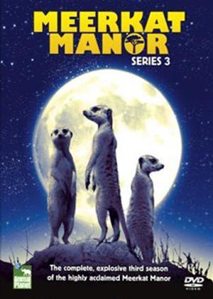 Rent Meerkat Manor: Series 3 Online DVD Rental