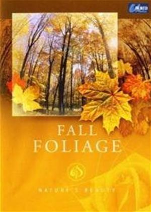 Rent Nature's Beauty: Fall Foliage Online DVD Rental