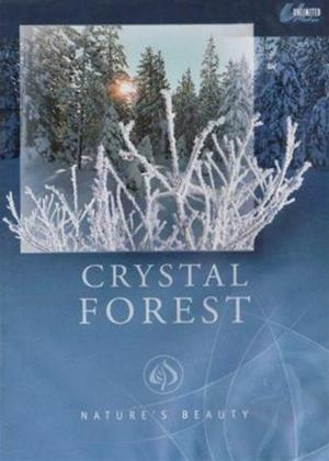 Rent Nature's Beauty: Crystal Forest Online DVD Rental
