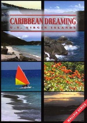 Rent Caribbean Dreaming Online DVD Rental
