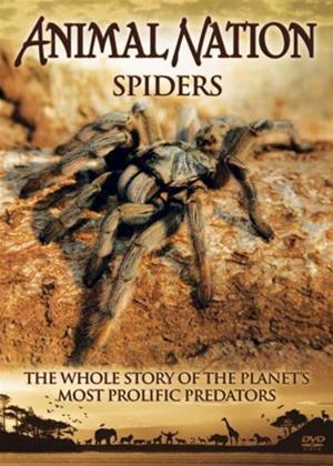 Rent Animal Nation: Spiders Online DVD Rental