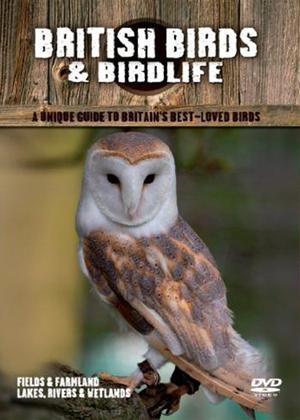 Rent British Birds: Fields and Farmlands Online DVD Rental