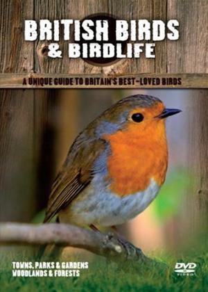 Rent British Birds: Towns Parks and Gardens Online DVD Rental