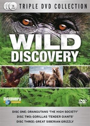 Rent Wild Discovery Online DVD Rental