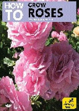 Rent How to Grow Roses Online DVD Rental