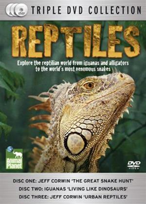 Rent Reptiles Online DVD Rental