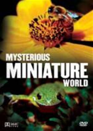 Rent Mysterious Miniature World Online DVD Rental