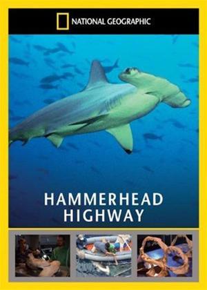 Rent Hammerhead Highway Online DVD Rental