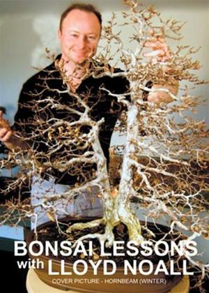 Rent Bonsai Lessons with Lloyd Noall: Vol.1 Online DVD Rental
