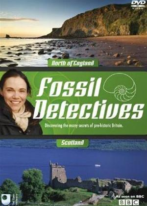 Rent Fossil Detectives: North England and Scotland Online DVD Rental