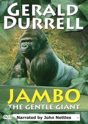 Rent Gerald Durrell: Jambo the Gentle Giant Online DVD Rental