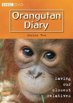 Rent The Orangutan Diaries: Series 2 Online DVD Rental