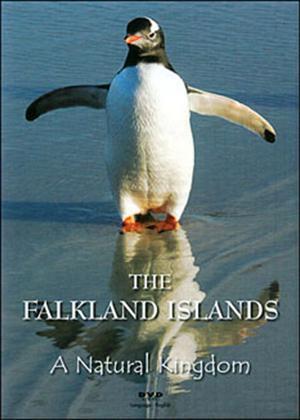 Rent The Falkland Islands: A Natural Kingdom Online DVD Rental