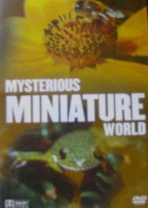 Rent Mysterious Minature World Online DVD Rental