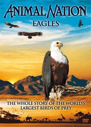 Rent Animal Nation: Eagles Online DVD Rental