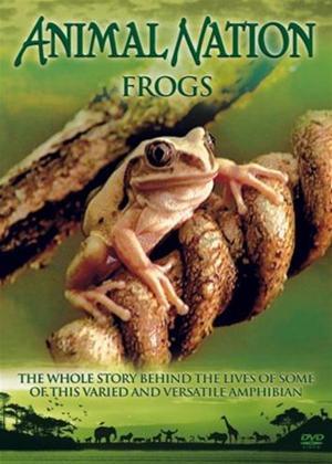 Rent Animal Nation: Frogs Online DVD Rental