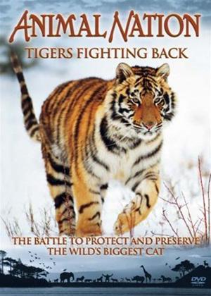Rent Animal Nation: Tigers Fighting Back Online DVD Rental