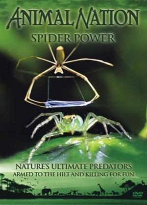 Rent Animal Nation: Spider Power Online DVD Rental