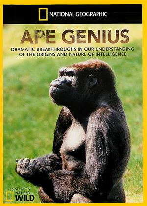 Rent National Geographic: Ape Genius Online DVD Rental