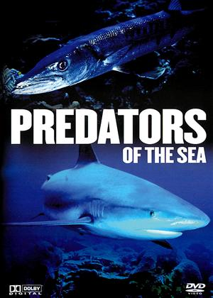 Rent Predators of the Sea Online DVD & Blu-ray Rental