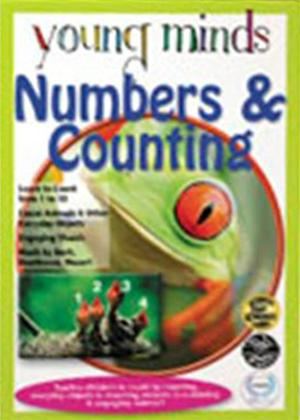 Rent Numbers and Counting Online DVD Rental