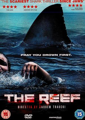 Rent The Reef Online DVD Rental