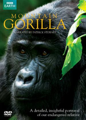 Rent Mountain Gorillas Online DVD Rental