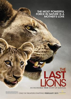 Rent The Last Lions Online DVD Rental