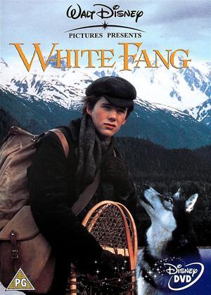 Rent White Fang Online DVD Rental