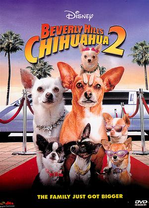 Rent Beverly Hills Chihuahua 2 Online DVD Rental