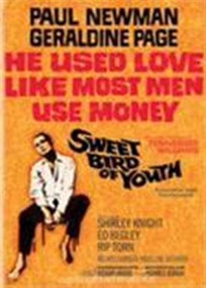 Rent Sweet Bird of Youth Online DVD Rental