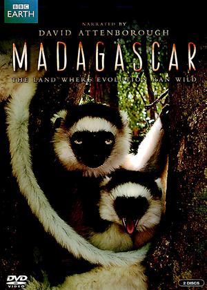 Rent Madagascar Online DVD Rental