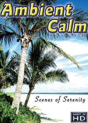 Rent Ambient Calm: Ultimate Relaxation Online DVD Rental