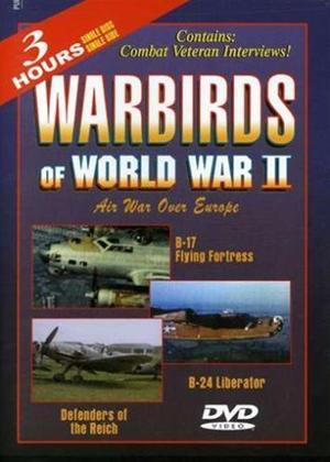 Rent Warbirds of World War II: Vol.1 Online DVD & Blu-ray Rental