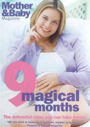 Rent 9 Magical Months Online DVD Rental