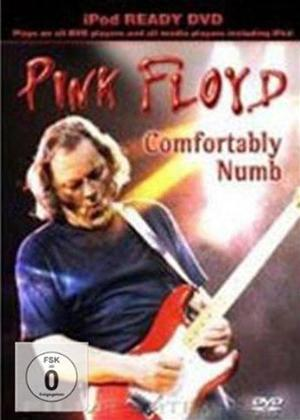 Rent Pink Floyd: Comfortably Numb Online DVD Rental