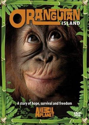 Rent Orangutan Island Online DVD Rental