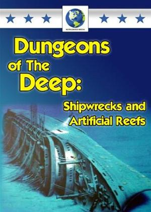 Rent Dungeons of the Deep: Shipwrecks and Artificial Reefs Online DVD Rental