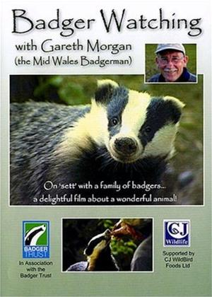 Rent Badger Watching with Gareth Morgan Online DVD Rental