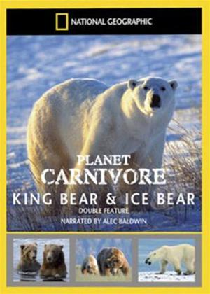Rent National Geographic Planet Carnivore: King Bear Online DVD Rental