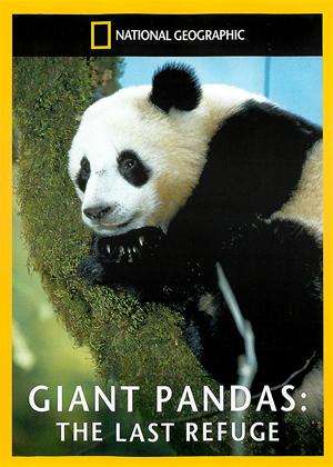 Rent National Geographic: Giant Pandas: The Last Refuge Online DVD Rental